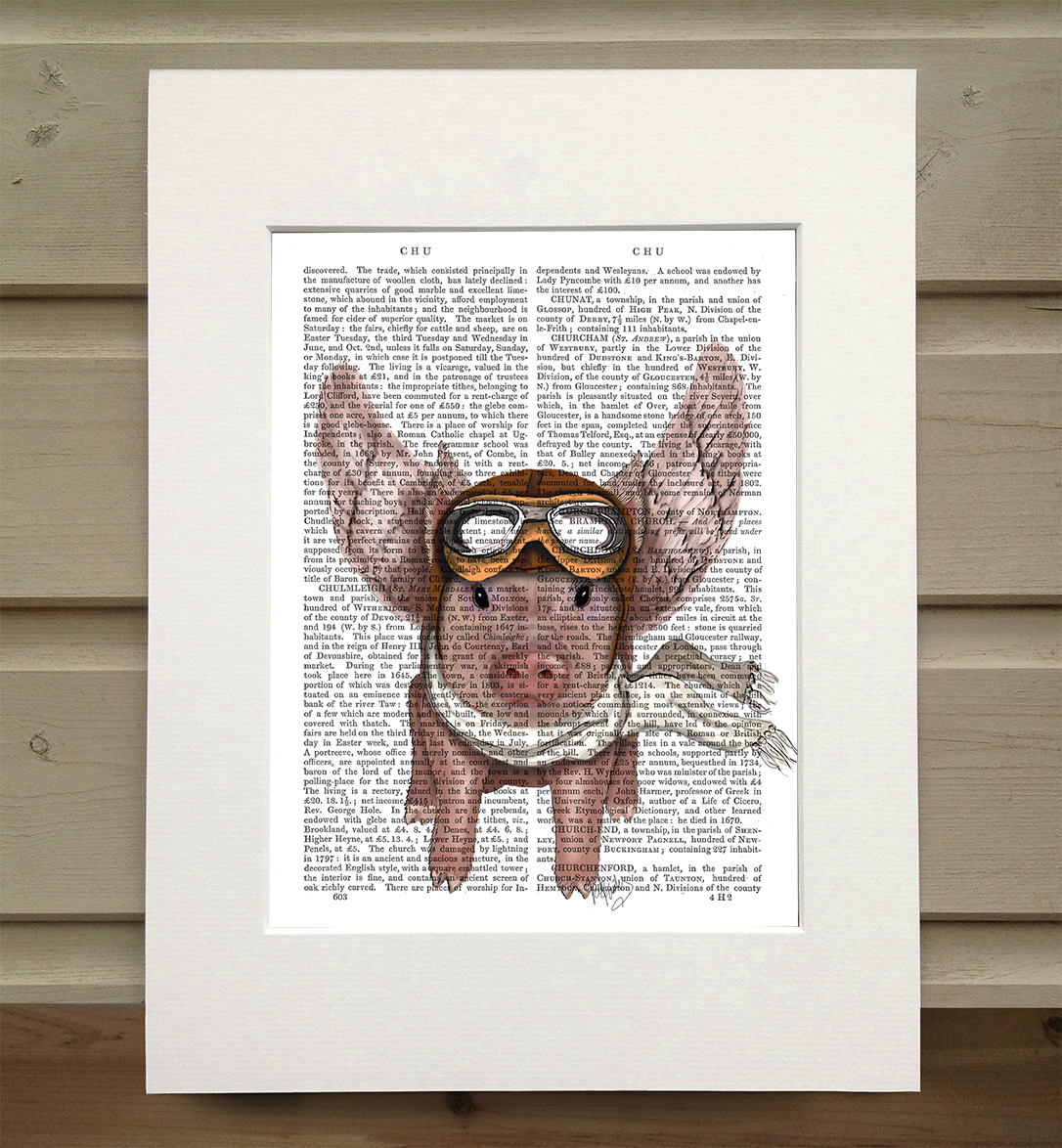 Aviator Piggy, Book Print