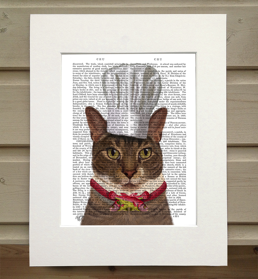 Cat Chef, Book Print